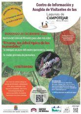 El Centro de Información y Acogida de Visitantes de Las Lagunas de Campotéjar-Salar Gordo de Molina de Segura abre sus puertas al público el domingo 20 de diciembre para dar a conocer una especie vegetal típica de los humedales, el taray