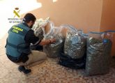 La Guardia Civil desmantela en Cieza un punto de almacenamiento de marihuana