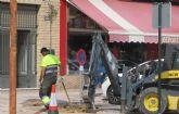 Comienzan las labores de reposición de arbolado en Las Torres de Cotillas