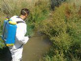 San Pedro del Pinatar refuerza las acciones de   control de plagas ante el aumento de mosquitos por las temperaturas
