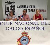 VIII Concurso Morfológico del Galgo Español en Balsicas el próximo sábado 21 de julio