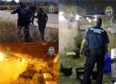 Desmantelada una plantación de marihuana tipo indoor en Fortuna