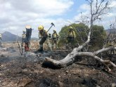Operativo del Infomur controla incendio forestal en Macisvenda (Abanilla)