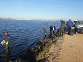 Finalizan los trabajos de limpieza y abren las playas de Villananitos, La Puntica y La Mota