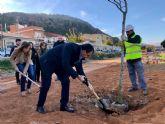 Comienzan a plantar los 1.800 árboles de 25 especies diferentes que llenarán de vida la Vía Verde