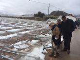La consejera de Agricultura y el alcalde de Totana visitan los parrales de uva de mesa damnificados en El Raiguero por el temporal de nieve