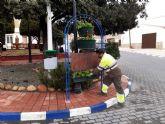 Más de 10.000 flores de temporada mejoran la imagen de zonas verdes y maceteros de las pedanías de Murcia