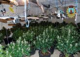 Desmanteladas en Bullas dos plantaciones indoor de marihuana con más de un centenar de plantas