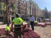 Más de 80.000 flores llenarán de color la ciudad de Murcia para la feria de septiembre