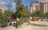 Más de 240.000 nuevas plantas arbustivas para crear perímetros verdes en los parques y jardines del municipio