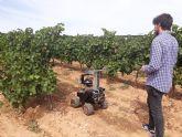 AINIA desarrollará nueva tecnología para mejorar control de plagas en cultivos, en tiempo real.