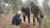 El proyecto de Medio Ambiente ´Mi empresa ha plantado un bosque´ recibe la aportación de la Agrupación Sardinera de Murcia