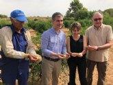 La Región de Murcia acoge las primeras plantaciones de caviar cítrico
