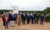 El sector y el Consell impulsan el consumo de los Cítricos Valencianos durante el Primer Corte de la Naranja Valenciana