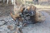 La Comunidad incrementa sus efectivos para que los vecinos de Totana realicen las tradicionales barbacoas en la romería de Santa Eulalia