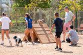 Ciudadanos y protectoras participarán en la redacción de la nueva Ordenanza de Animales de Compañía