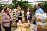 IMIDA y Ayuntamiento colaboran con productores agrícolas en la mejora de los cultivos tropicales