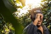 Kiwi Jingold® celebra su 20 aniversario con promociones en Mercamadrid