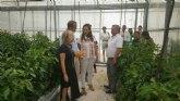 El Cifea de Torre Pacheco desarrolla proyectos de investigación y formación con centros europeos