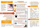 La Concejalía de Salubridad recuerda las medidas para evitar la expansión del mosquito tigre