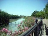 La CHS declara oficialmente apto para navegar el tramo del río Segura que discurre junto al núcleo urbano de Archena