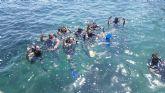 Un centenar de jóvenes disfruta de los bautismos de buceo y avistamientos de cetáceos