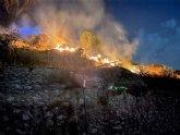 Incendio de canas y matorral en la subida al castillo de Mula