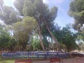 Las lluvias del 10 de mayo obligan a talar dos pinos en el jard�n de San Crist�bal