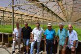 MC demandará al Pleno municipal apoyo a la agricultura del Campo de Cartagena