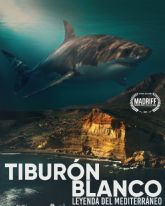 El documental 'Tiburón blanco', de la productora aguileña School of sharks, seleccionado en diversos festivales internacionales