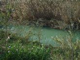 Educación ambiental y recuperación del bosque de ribera en la Contraparada con el Centro Concertado de Enseñanza Samaniego de Alcantarilla