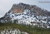 El Parque Regional de Sierra Espuña solicita la renovaci�n de la Carta Europea de Turismo Sostenible para el periodo 2017-2021
