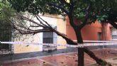 Retiran arbolado y ramas caídas en distintas zonas del municipio debido a las fuertes lluvias