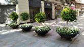 Más de 200 maceteros con 30.000 flores decoran las calles de Murcia