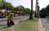 Concluye la poda de más de 500 palmeras del barrio de La Flota