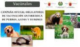 La campaña anual de vacunación antirrábica obligatoria finaliza el próximo 31 de agosto para los animales de las especies canina, felina y hurones