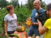 Un equipo del programa televisivo 'Aquí la Tierra' de TVE graba varios reportajes relacionados con iconos de la idiosincrasia gastronómica y cultural de Totana