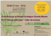 El Centro de Información de la Naturaleza Alto del Rellano de Molina de Segura dedica la jornada del domingo 27 de noviembre a las plantas aromáticas y sus usos tradicionales
