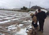 La Alcaldía eleva una moción solidarizándose con los agricultores afectados por el temporal de frío polar