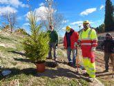 Con la plantación de más de 400 árboles y arbustos en los 'Caminos Rojos', finaliza el programa que durante cuatro meses ha trabajado en la limpieza