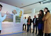 La exposición ´Mar Menor, nuestro humedl´ pretende implicar a los habitantes de Fuente Álamo en la conservación de este ecosistema