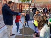 El colegio Francisco Salzillo de Los Ramos se suma a la plantación de nuevo arbolado gracias al Plan Foresta