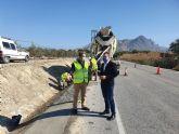 Fomento realiza obras de mejora en la carretera que conecta Abanilla con Santomera
