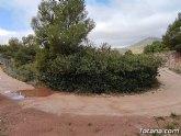 Denuncian ante la CHS el vallado del barranco de Enmedio en el Purgatorio (Sierra Espuna)