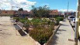 El Municipio de Murcia cuenta con más de 60 variedades de cactus