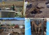 La Guardia Civil investiga al propietario de un criadero de perros de Mazarr�n por delito de maltrato animal