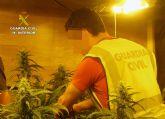 La Guardia Civil desmantela una plantación indoor de marihuana en Librilla