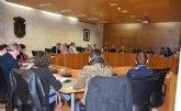 El Pleno ordinario de marzo escenificará este jueves la adhesión al Manifiesto por el Día Mundial de las Lipodistrofias