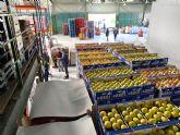 El Banco de Alimentos recibe 250 toneladas desde la declaración del estado de alarma