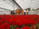 El vivero municipal de El Mayayo producirá 120.000 plantas de diferentes especies antes de que acabe el año